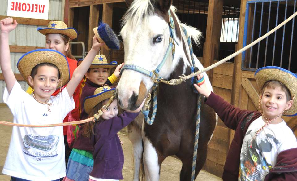 all about horses: horseback riding and mucking out the stables, Vim's Passover Day Camp